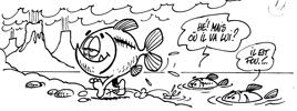 Evolution des poissons