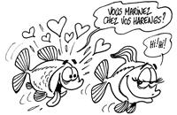 Reproduction chez les poissons